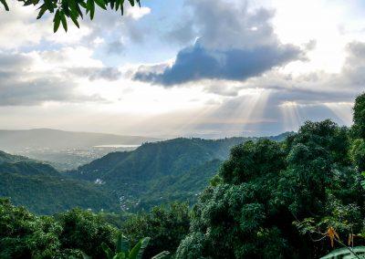 Blue Mountains - Kingston View