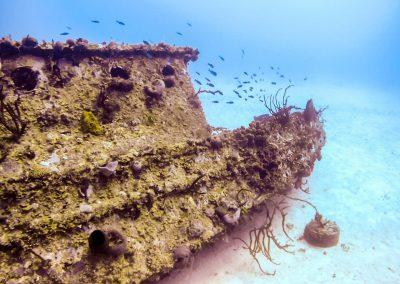 Scuba Diving - Wreck in Negril, Jamaica