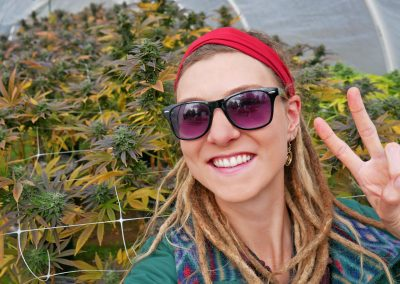 Northern California - Peace from the Weed Farm