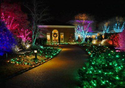 Illuminated plants at Lewis Ginter Botanical Garden during GardenFest of Lights in Richmond, VA