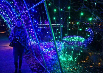 Rasta girl in tunnel of lights at Gardenfest of Lights in Richmond, VA