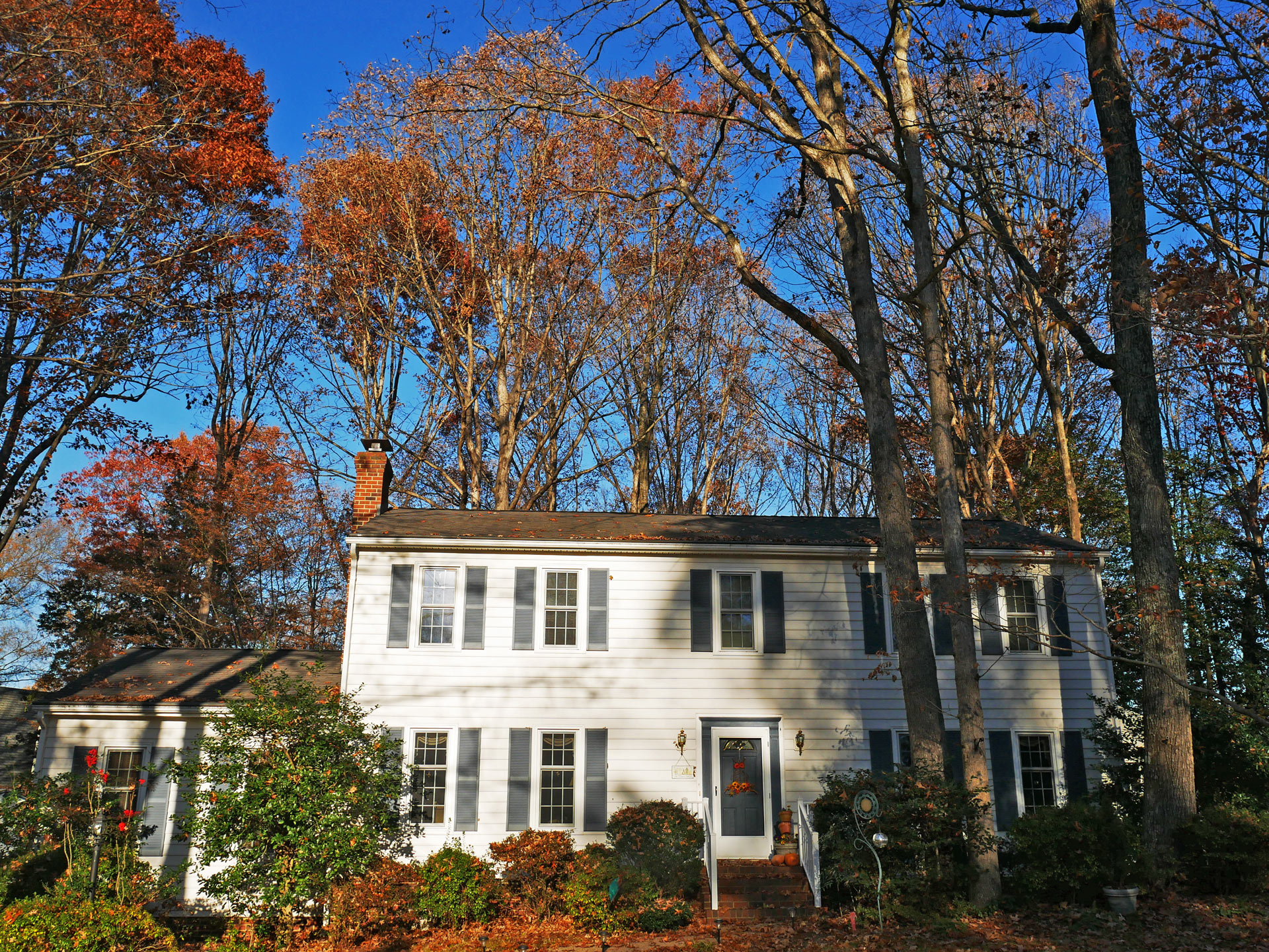 Home during fall surrounded by trees and bushes in Richmond, VA