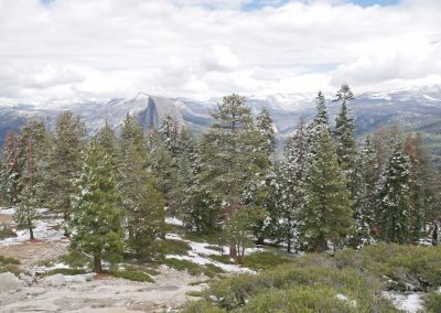 Sentinel Dome with snowy trees in Yosemite National Park