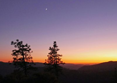 Trees in front of sunset sky at Turtleback Dome in Yosemite National Park