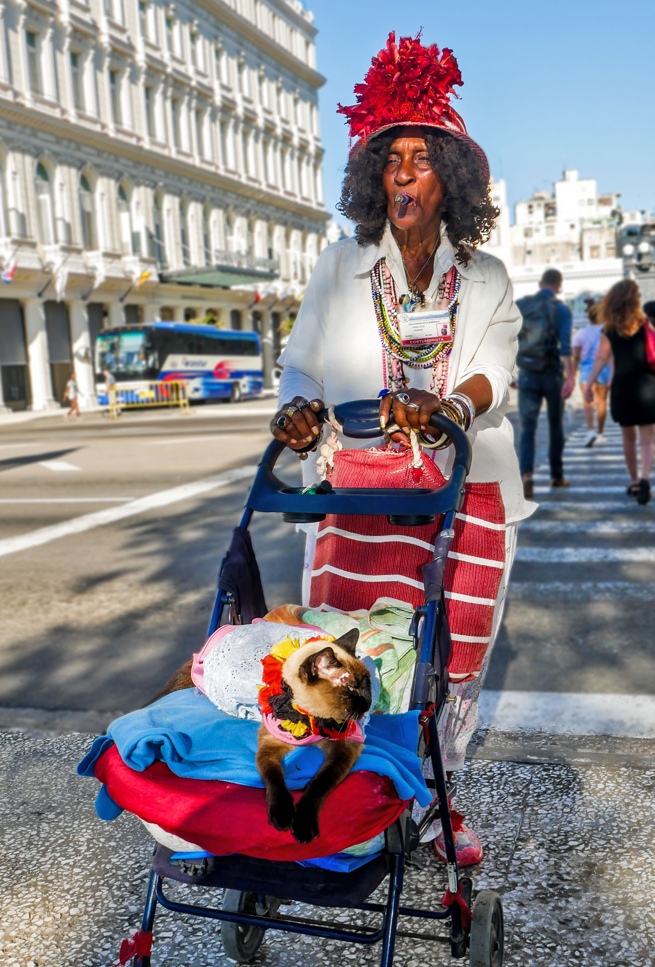 Old woman with big hat, cigar and cat on street in Havana, Cuba