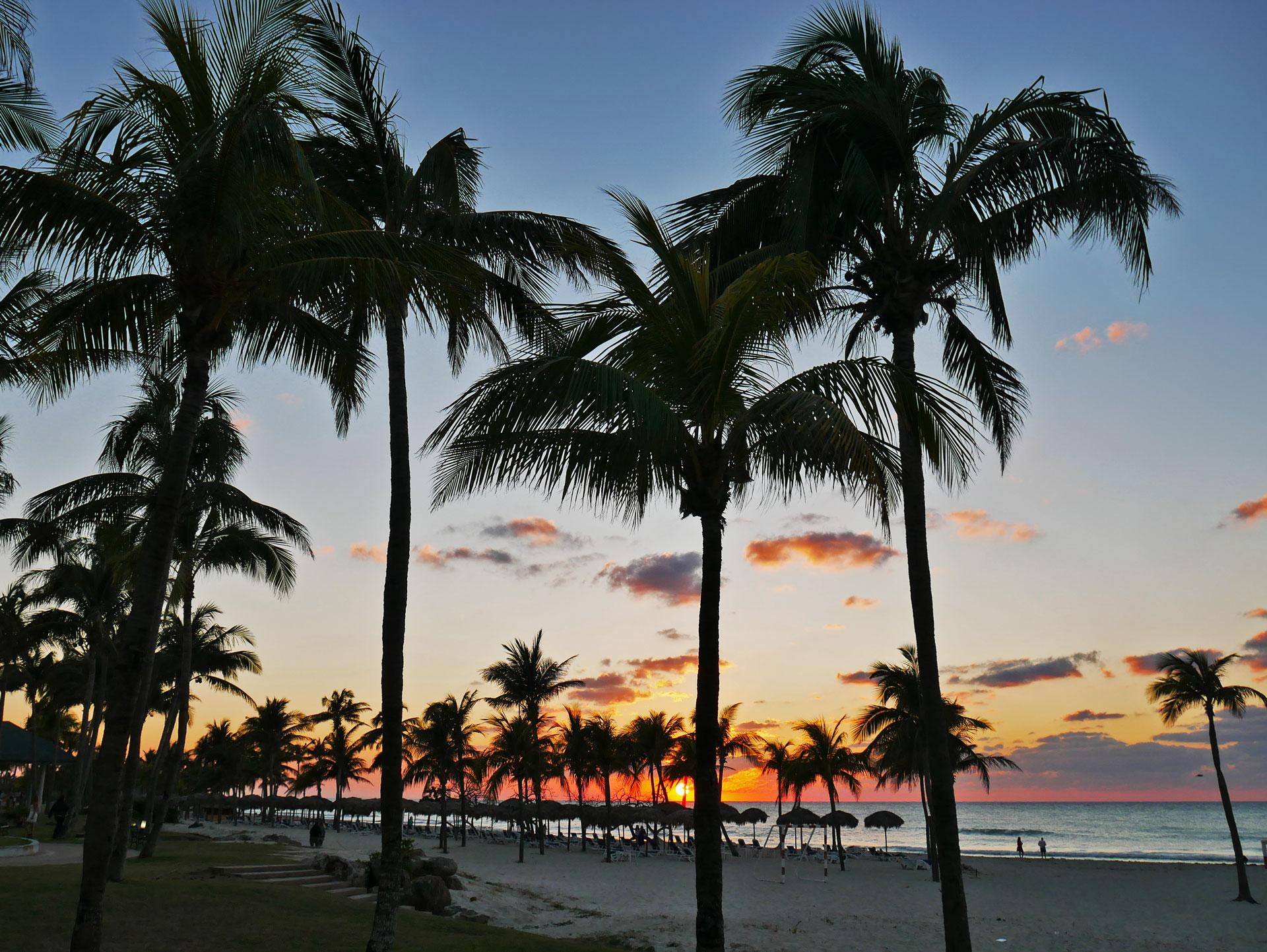 Sunset sky and palm trees at Varadero beach, Cuba
