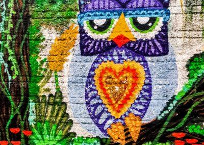 Florianópolis – Graffiti Owl